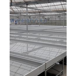 苗床集结号-潮汐苗床-新型灌溉系统-报价