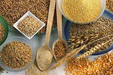 大米产业参加北京IGPE粮油精品展,是市场的选择