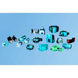 山博电机(图)、直流电机生产厂家、百色直流电机