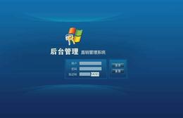 直推销售模式消费 销售软件网站系统开发