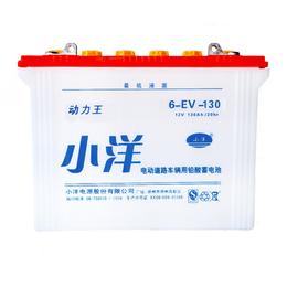 2019新款蓄电池销售 观光车新能源电池