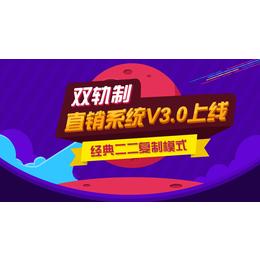 秦皇岛双轨直销系统软件 双轨直销结算软件
