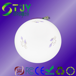 STJY LED吸顶灯24W降功率一体化应急电源