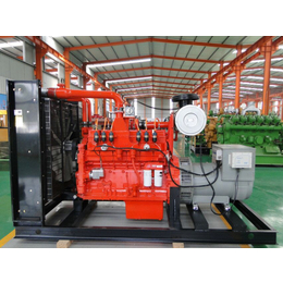 300KW天然气CCHP发电机 燃气冷热电联供分布式能源发电