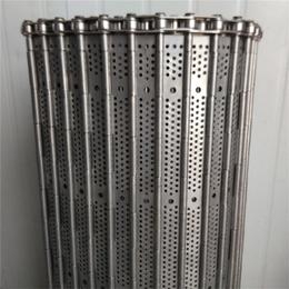 烘干机链板报价-齐齐哈尔烘干机链板-强盛网链(在线咨询)