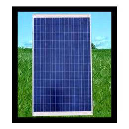 振鑫焱全国上门回收,重庆太阳能板,鱼光互补太阳能板