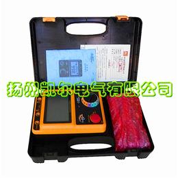 江苏数字兆欧表 绝缘电阻测 试仪