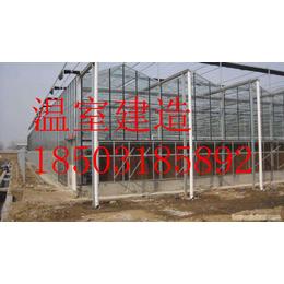 温室大棚-植物的阳光暖房-专业设计安装-省心省钱省时省力