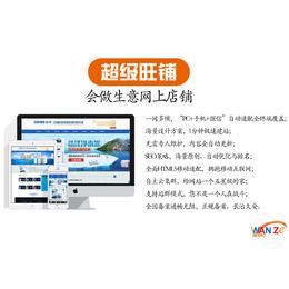 网络营销服务-芜湖网络营销-安徽万泽seo优化(查看)