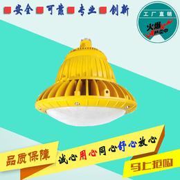 EXD109系列LED照明灯投光灯泛光灯平台灯