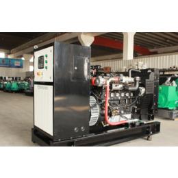 河南养殖场60kw千瓦气体发电机组厂家 猪场备用燃气发电机