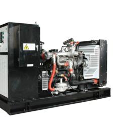 广东50kw千瓦全自动雷沃燃气发电机组 养猪场气体发电项目