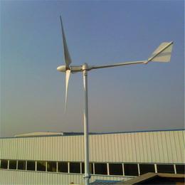 带底座风力发电机家用小型风力发电机组厂家真材实料