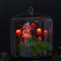 趁着女儿熟睡四个小时,用玻璃胶做出童话花园