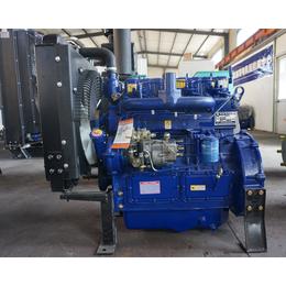 供应亚博平台网站2019年潍坊柴油机4100发电型快速启动发电