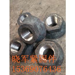 晓军钢筋锚固板精轧螺母精轧螺纹钢螺母高强度高质量批发
