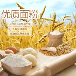 面食原材料精致面粉