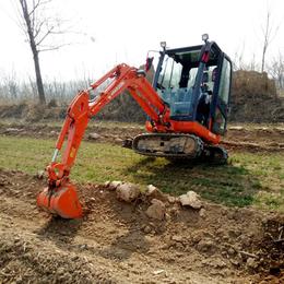 任何土质都能用的小型挖土机 小钩机报价迷你微型大棚小型挖掘机