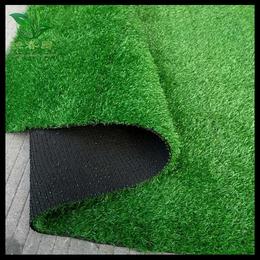 优质的场草坪网哪家好
