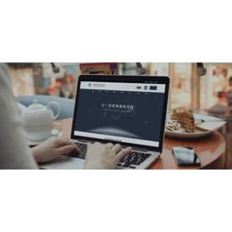 网页设计制作-网站建设-山东科冠信息技术缩略图