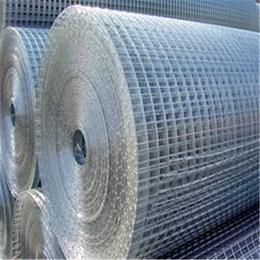 厂家供应优质振动电焊筛网 镀锌电焊网 缩略图