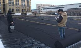 上海加强型蓄排水板 2公分蓄排水板 车库顶排水板