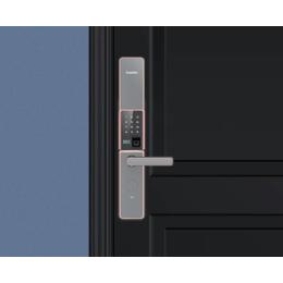 凯迪仕指纹锁家用防盗门密码锁v5缩略图