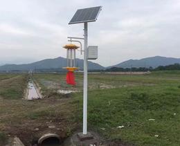 太阳能杀虫灯厂家-合肥太阳能杀虫灯-安徽普烁路灯厂家(查看)
