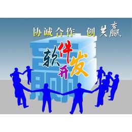 网络模式直销软件网络直营直销管理软件系统开发制作