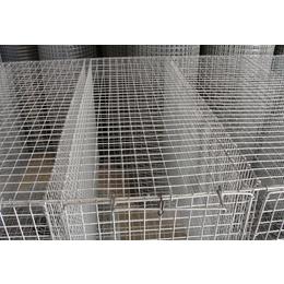直供网片-镀锌-优质丝网-耐腐蚀-规格齐全-量大从优