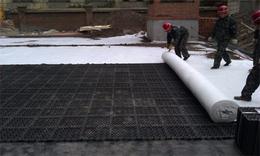 浙江加强型蓄排水板 2公分蓄排水板 车库顶排水板