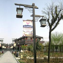 景观灯 3米4米定制生产 适用于户外装饰照明  欢迎电话咨询