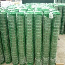 厂家直销优质美观耐用双边丝防护网 荷兰网护栏网 钢丝网大门缩略图