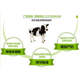 奶牛消化不良怎么办用什么药管用