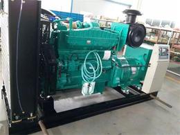 河北100kw生物质气发电机组 低能耗式秸秆气免维护发电机