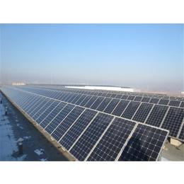 光伏发电电站|发电|东龙新能源公司(查看)