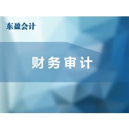 内部财务审计内容、丛台区财务审计、东盈会计放心省心(查看)