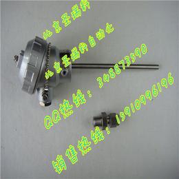 WREK-336 E型铠装热电偶