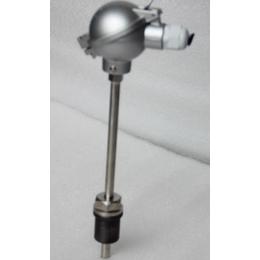 铂电阻温度传感器_pt100温度传感器_迪川仪表