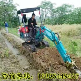 破碎混凝土果园大棚农用小型挖掘机 挖土除草专用挖掘机