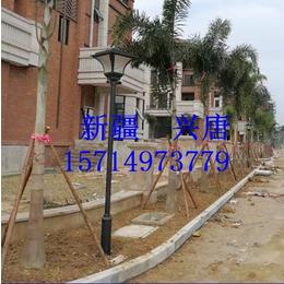 桂林江苏天日科技微光景观灯微光景观灯