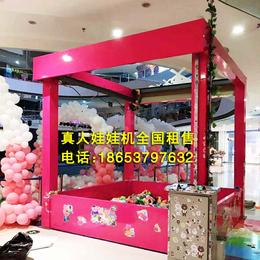 山东厂家优质娃娃机出售