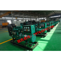 养殖专用发电机组30千瓦潍坊柴油发电机组