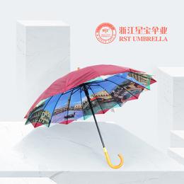 RST外贸出口欧洲建筑风景双层晴雨伞16k木手柄直杆伞