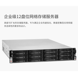 铁威马U12-420平安国际充值级12盘位nas网络存储服务器