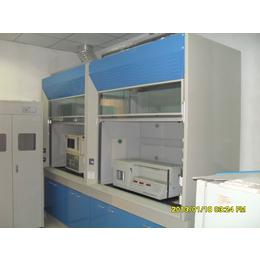 廠家直銷全鋼木通風柜,實驗室設備實驗臺中央臺藥品柜器皿柜