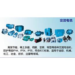 葫芦岛永磁电机-汽车永磁电机-山博电机(优质商家)