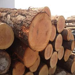 日照国鲁木材厂(图)-木材加工厂家电话-威海木材加工