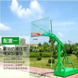 移动篮球架 成人户外学校家用标准篮球架室外可落地式挂式