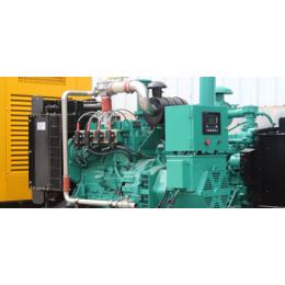 吉林20KW千瓦养殖场用气体发电机组 小功率燃气发电机价格